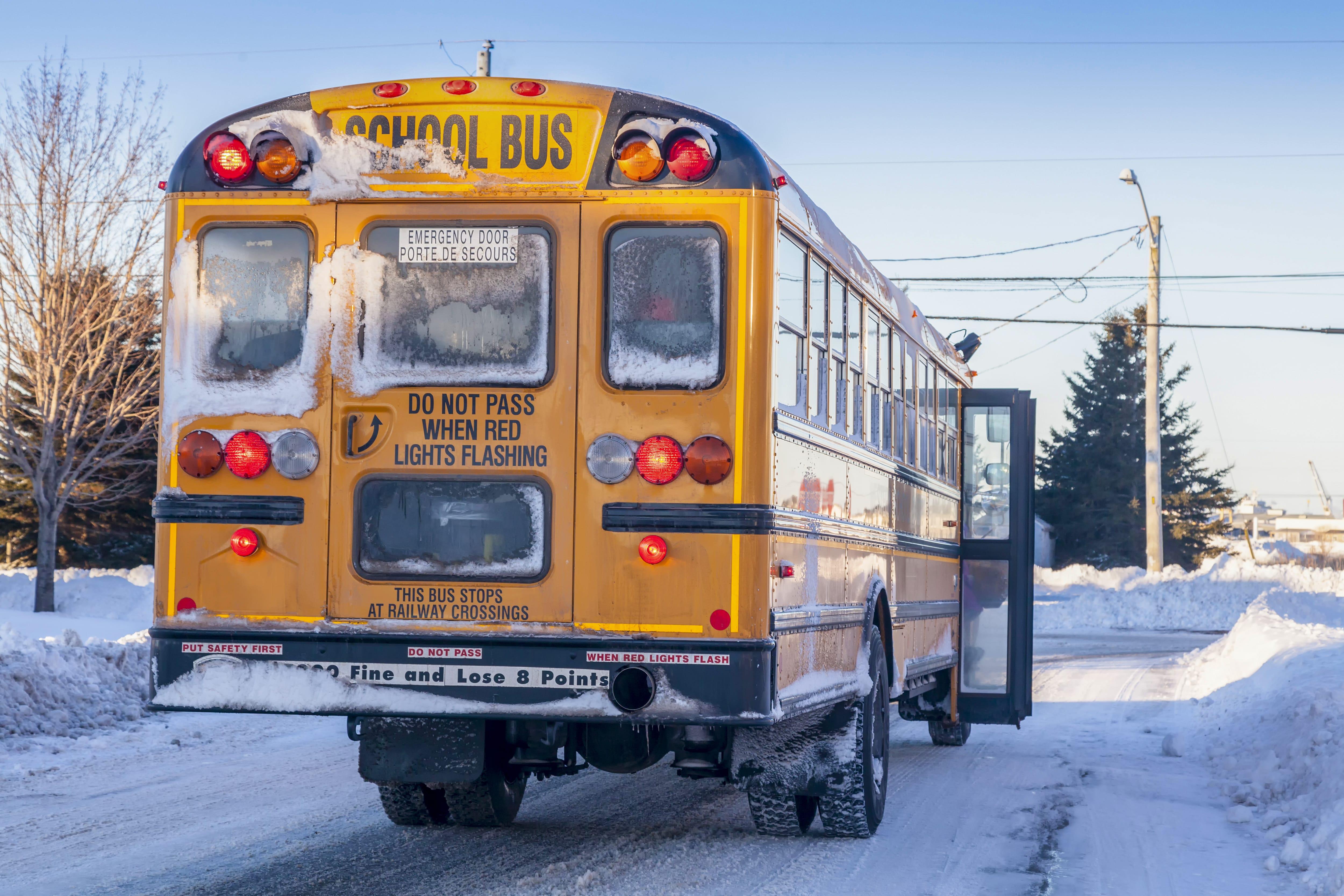 School Bus Driver 3