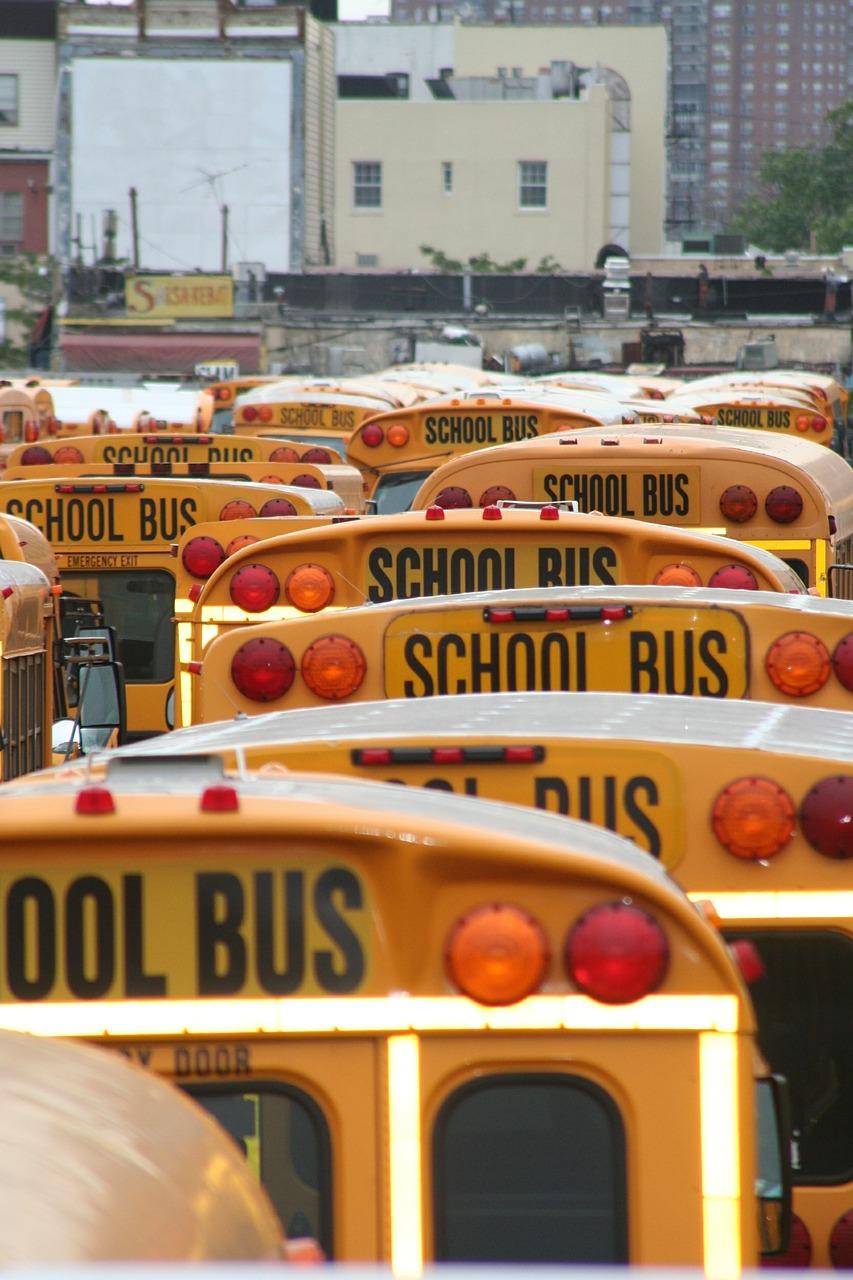School Bus Driver 4